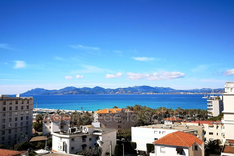 Photo Apartment Cannes Basse californie,   to buy apartment  3 rooms   77 m²
