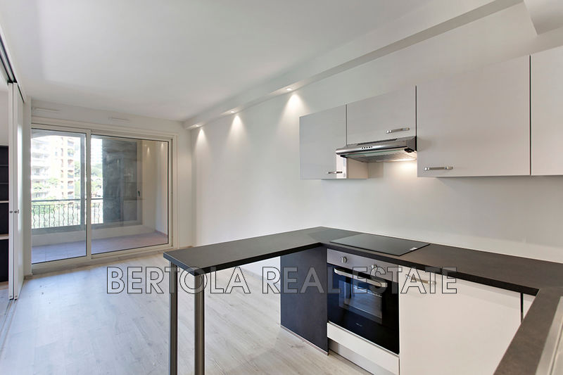 Apartment Monaco Fontvieille,   to buy apartment  2 rooms   52 m²
