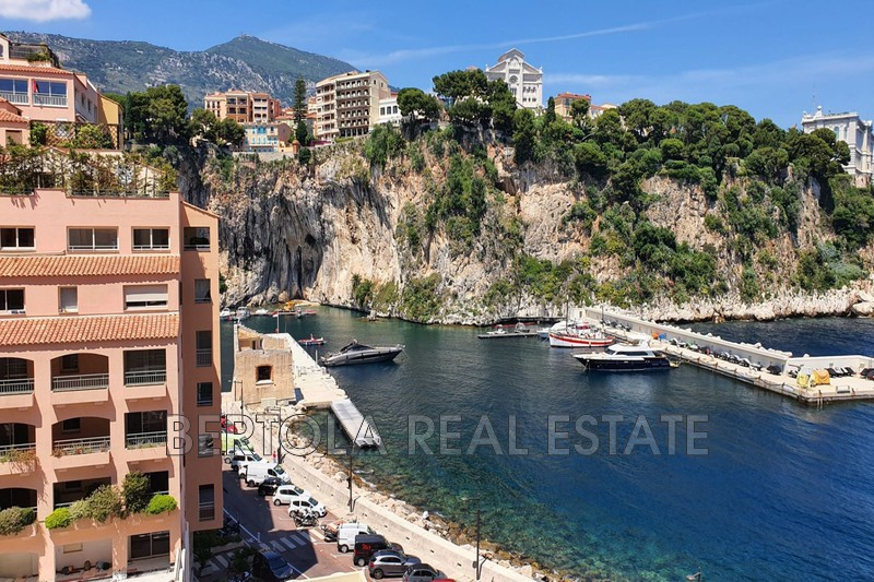 Apartment Monaco Fontvieille,   to buy apartment  5 rooms   213 m²