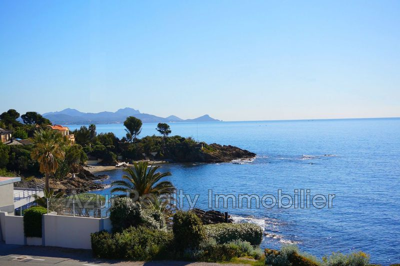Photo Apartment Saint-Aygulf Front de mer,   to buy apartment  2 rooms   42 m²