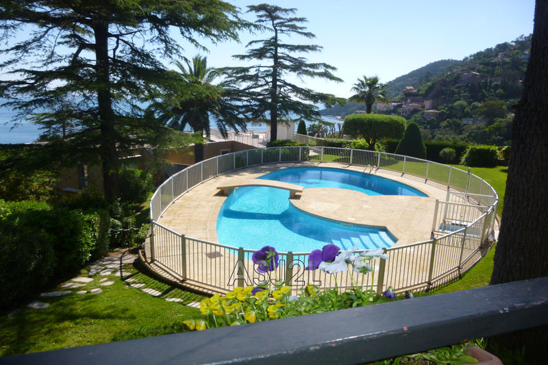 Photo Apartment Théoule-sur-Mer Village,   to buy apartment  1 room   37 m²