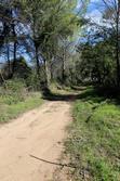 Vente terrain agricole Les Arcs