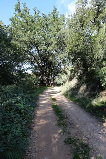 Photo n°6 - Vente terrain agricole Les Arcs 83460 - 27 000 €