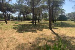 Vente terrain Puget-sur-Argens