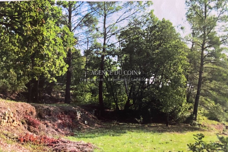 Photo Land Lorgues Campagne,   to buy land   1257 m²