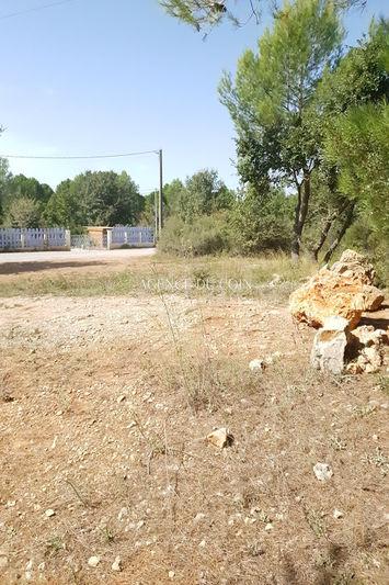 Photo n°3 - Vente terrain Trans-en-Provence 83720 - 140 000 €
