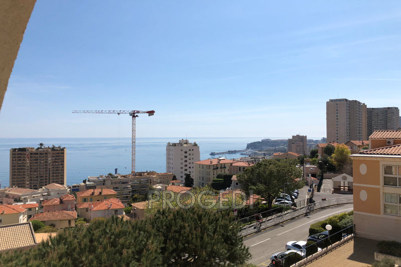 Photo Apartment Beausoleil Saint roman,  Rentals apartment  2 rooms   38 m²