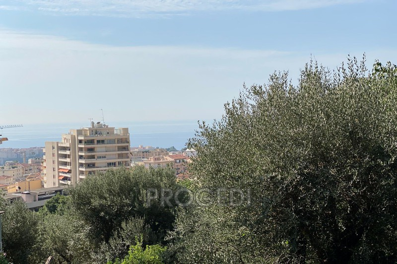 Photo Apartment Beausoleil   to buy apartment  2 rooms   42m²