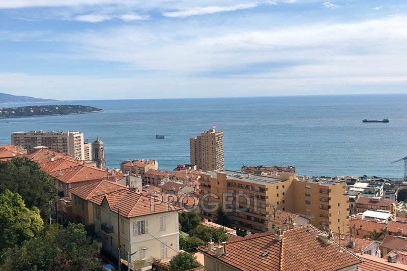 Photo Apartment Beausoleil   to buy apartment  2 rooms   77 m²