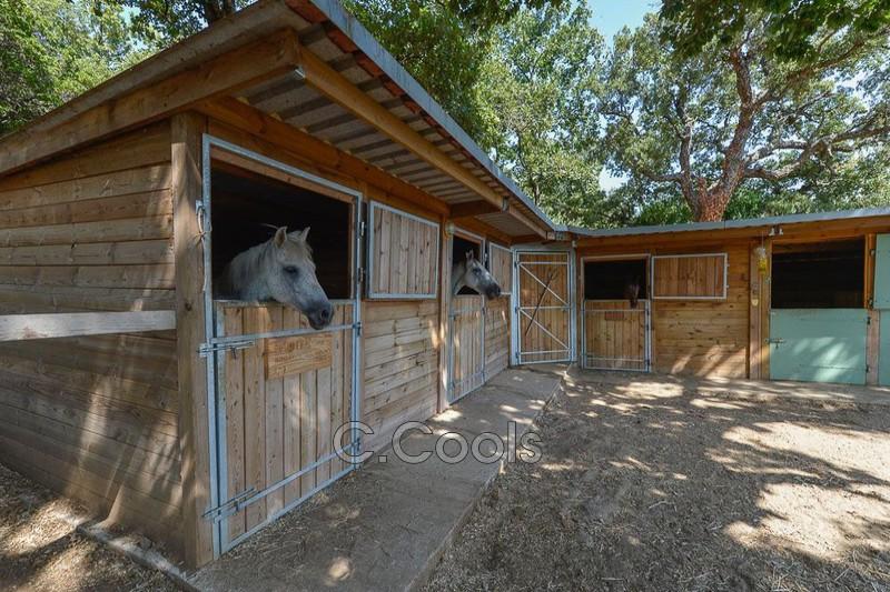 Photo n°14 - Vente Maison villa La Garde-Freinet 83680 - 1 207 000 €