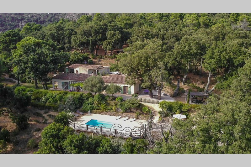 Photo Villa La Garde-Freinet   achat villa  6 chambres   190m²