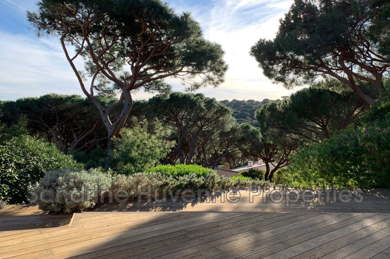 Photo Apartment La Croix-Valmer Proche plages,   to buy apartment  2 rooms   43 m²