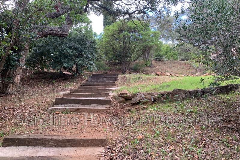 Photo n°9 - Vente Maison villa La Croix-Valmer 83420 - 1 160 000 €