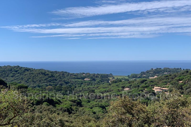 Photo Land La Croix-Valmer Proche plages,   to buy land   13500 m²