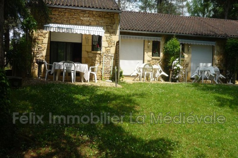 Photo Gîtes Sarlat-la-Canéda Centre-ville,   to buy gîtes  8 bedroom   239 m²