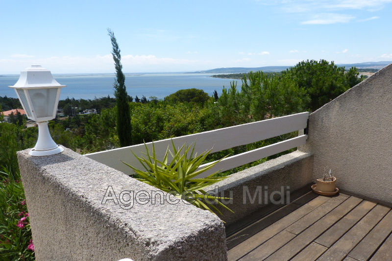Photo Apartment Leucate Leucate plage,  Location saisonnière apartment  2 rooms   45 m²