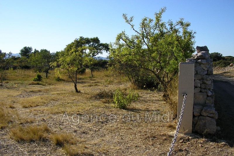 Photo Terrain de loisirs Leucate Leucate village,   to buy terrain de loisirs   1221m²