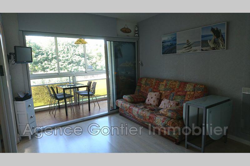 Photo Appartement Argelès-sur-Mer Proche plages,   achat appartement  2 pièces   28m²