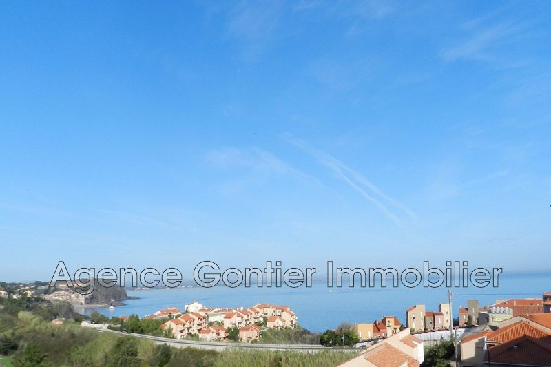 Photo Appartement Port-Vendres   achat appartement  2 pièces   51 m²