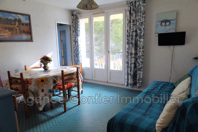 Photo Apartment Argelès-sur-Mer Proche plages,   to buy apartment  2 rooms   30 m²