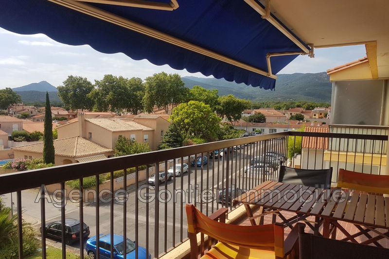Photo Appartement Argelès-sur-Mer Village,   achat appartement  3 pièces   52m²