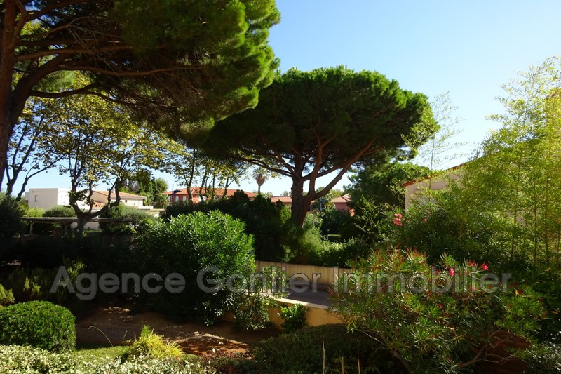 Photo Apartment Argelès-sur-Mer Proche plages,   to buy apartment  2 rooms   25 m²
