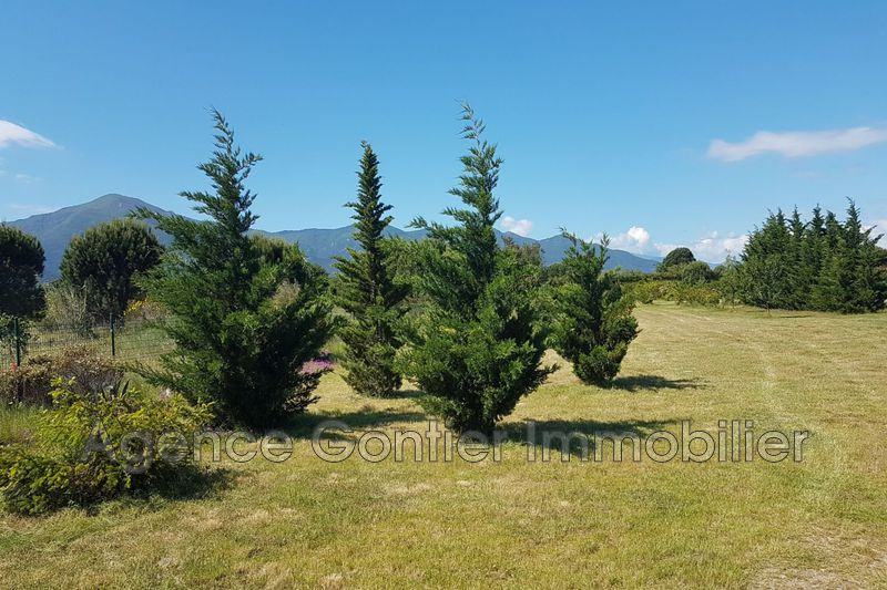 Photo Land Argelès-sur-Mer Les albères,   to buy land   5860 m²