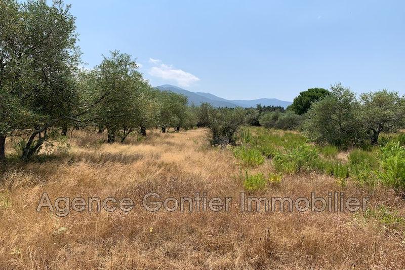 Photo Land Argelès-sur-Mer Les albères,   to buy land   1600m²