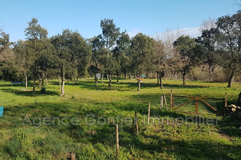 Photo Land Argelès-sur-Mer Les albères,   to buy land   8000 m²