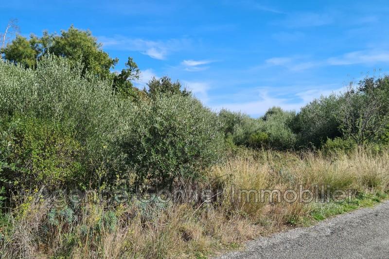 Photo Terrain à bâtir Argelès-sur-Mer   achat terrain à bâtir   1086m²