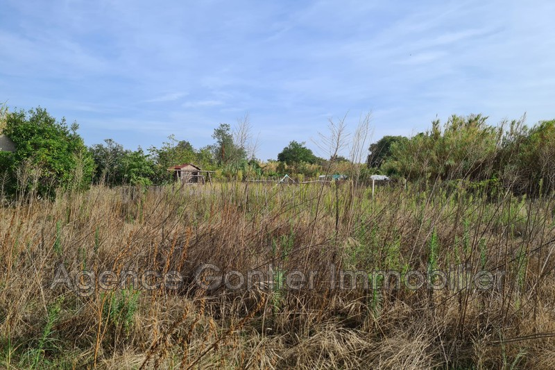 Photo Terrain Argelès-sur-Mer Village,   achat terrain   750m²