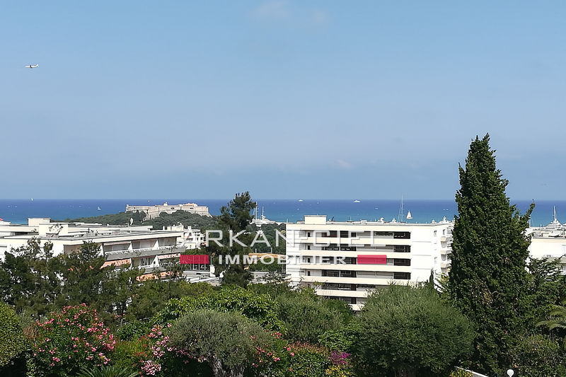 Photo Appartement Antibes   achat appartement  2 pièces   56 m²