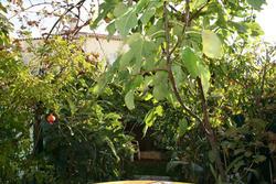 Photos  Appartement Rez-de-jardin à vendre Juan-les-Pins 06160