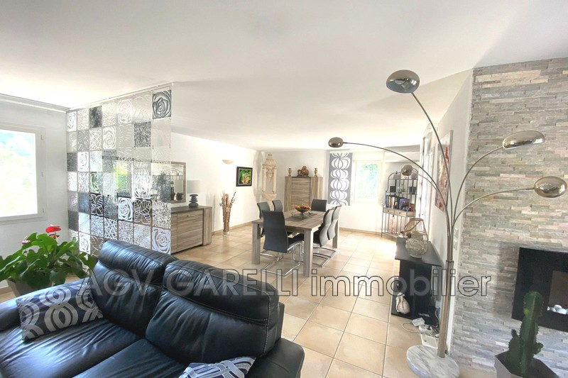 Photo n°6 - Vente maison Solliès-Pont 83210 - 630 000 €