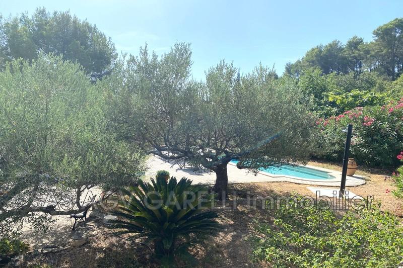 Photo n°2 - Vente maison Solliès-Pont 83210 - 630 000 €