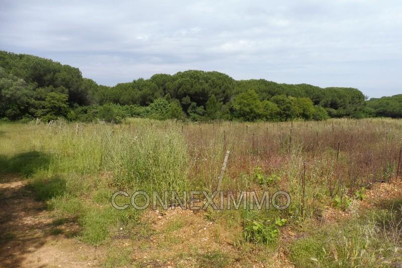Photo Terrain non constructible Générac Costieres,   achat terrain non constructible   4090m²