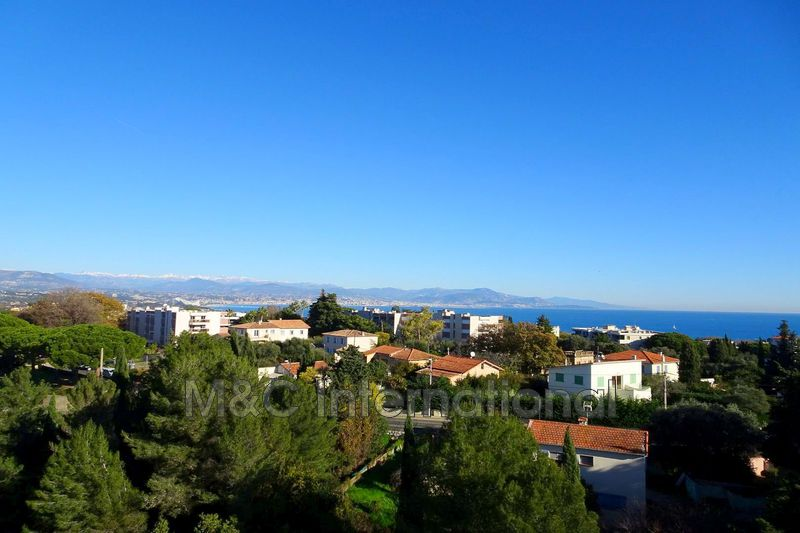 Photo Appartement Antibes  Location appartement   79 m²