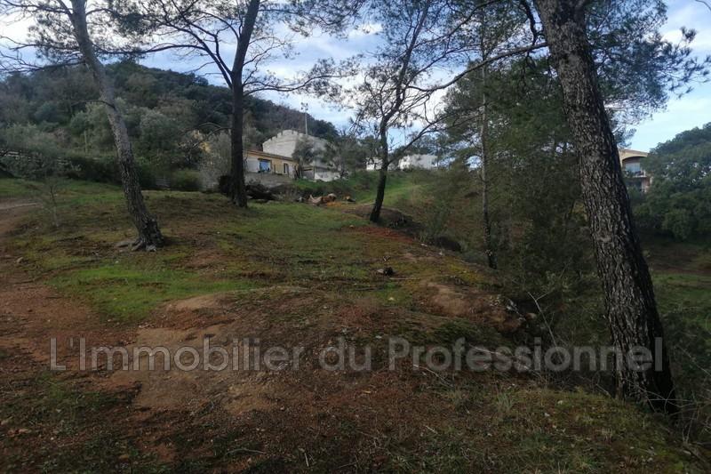 Photo n°6 - Vente terrain Vidauban 83550 - 158 000 €