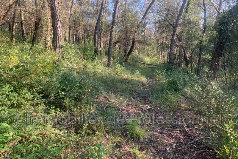 Photo n°3 - Vente terrain Lorgues 83510 - 120 000 €