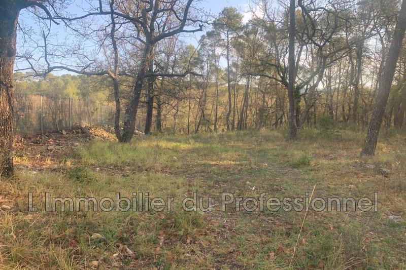 Photo n°2 - Vente terrain Lorgues 83510 - 120 000 €