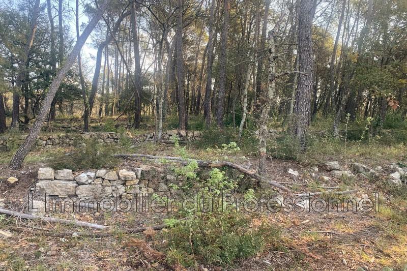 Photo n°6 - Vente terrain Lorgues 83510 - 120 000 €