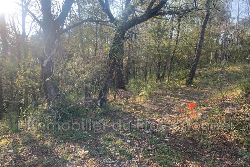 Photo n°8 - Vente terrain Lorgues 83510 - 120 000 €