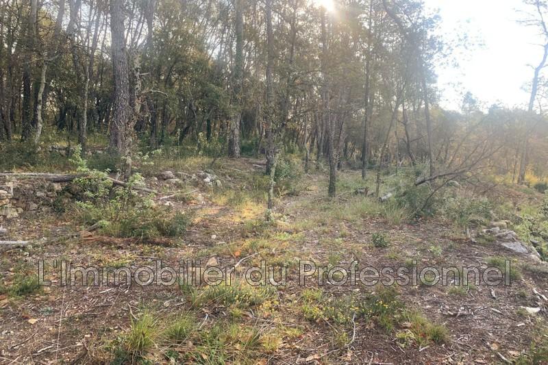 Photo n°1 - Vente terrain Lorgues 83510 - 120 000 €