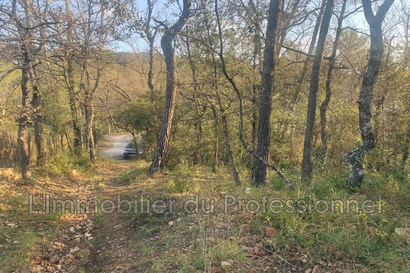 Photo n°4 - Vente terrain Lorgues 83510 - 125 000 €