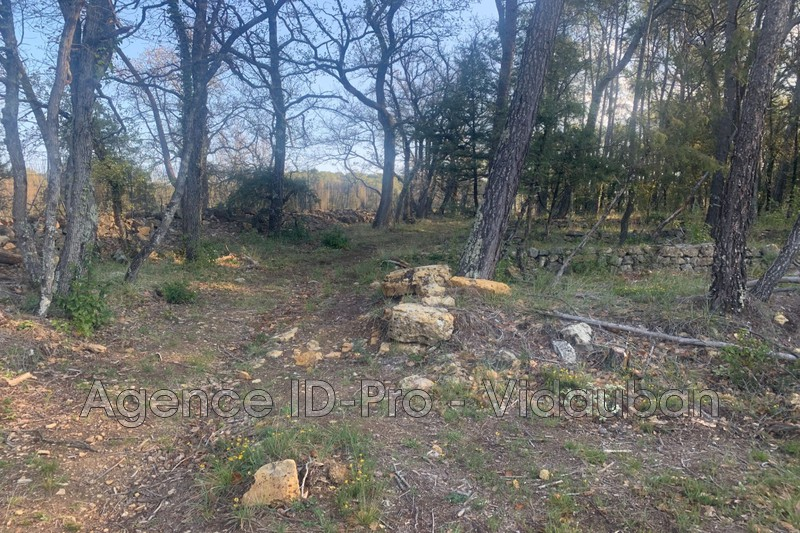 Photo n°1 - Vente terrain Lorgues 83510 - 125 000 €