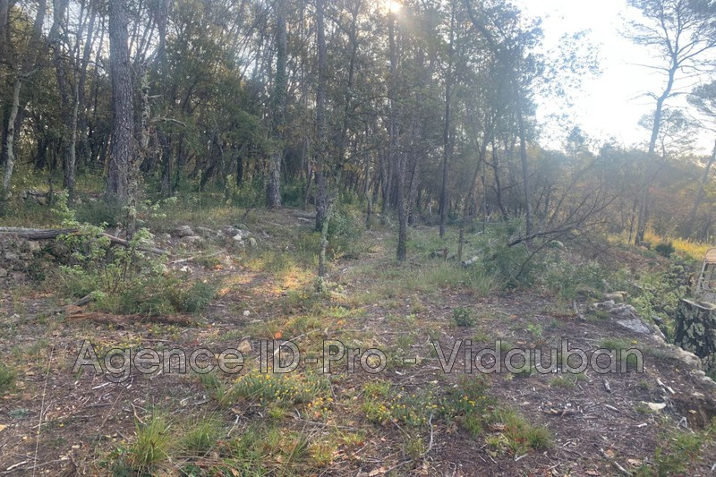 Photo n°12 - Vente terrain Lorgues 83510 - 125 000 €