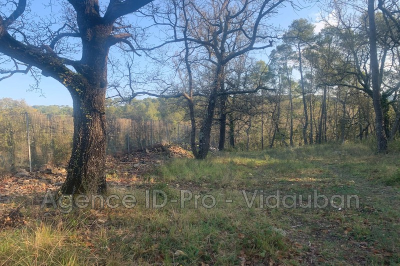 Photo n°11 - Vente terrain Lorgues 83510 - 125 000 €