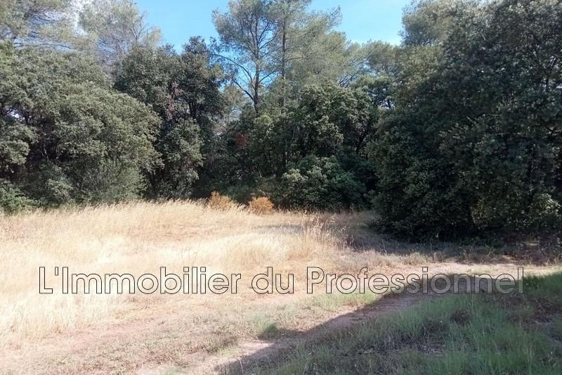 Photo n°4 - Vente terrain Le Cannet-des-Maures 83340 - 200 000 €
