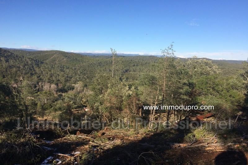 Photo n°4 - Vente terrain Vidauban 83550 - 90 000 €