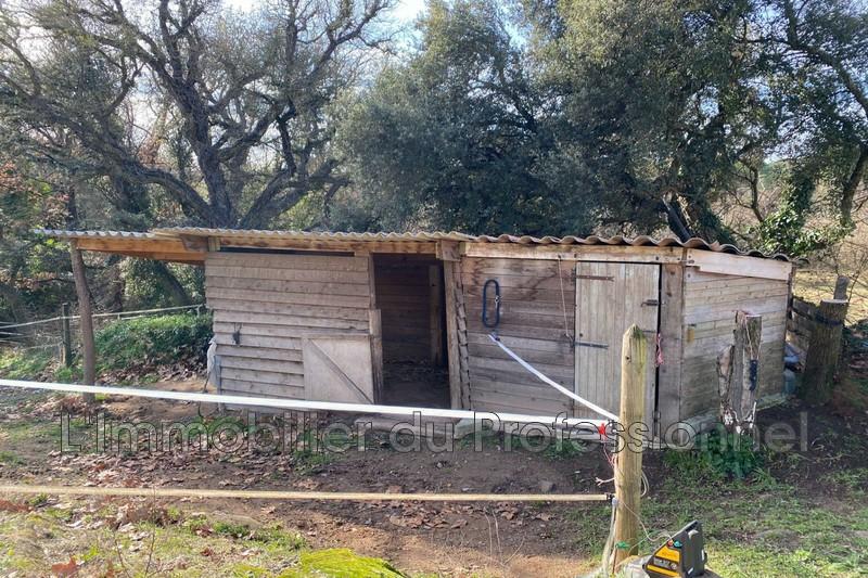 Photo n°18 - Vente maison Vidauban 83550 - 892 500 €